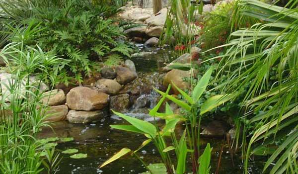 I Dig Ponds - Florida pond installation, servies, supplies ...